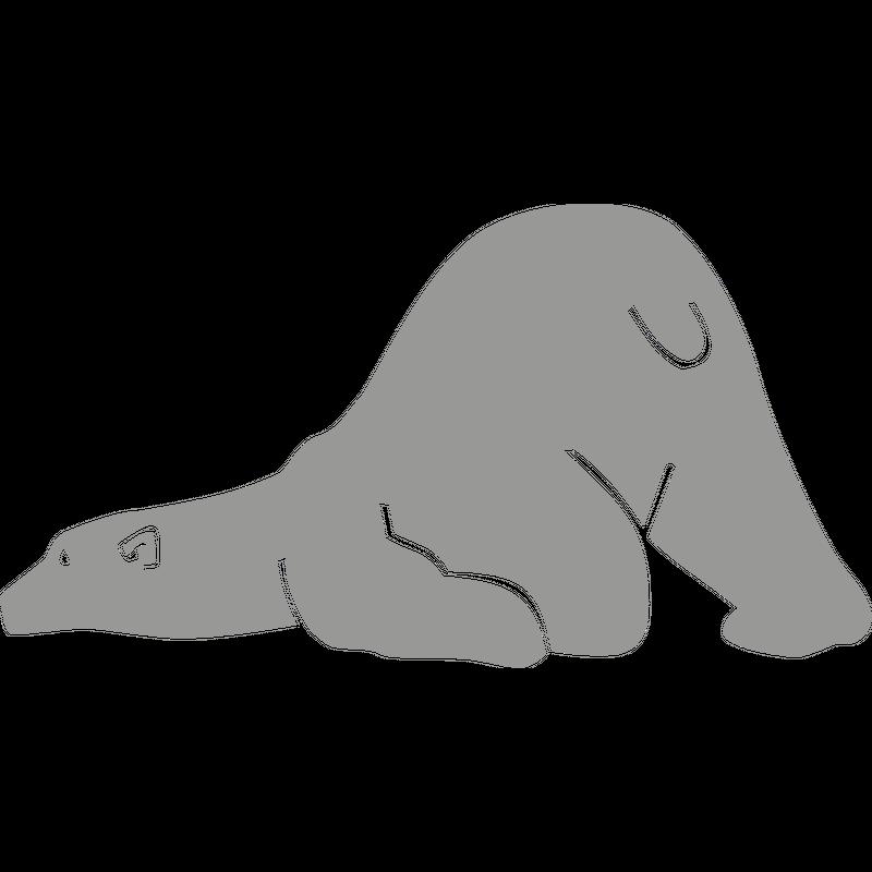 Eisbär Polarbär