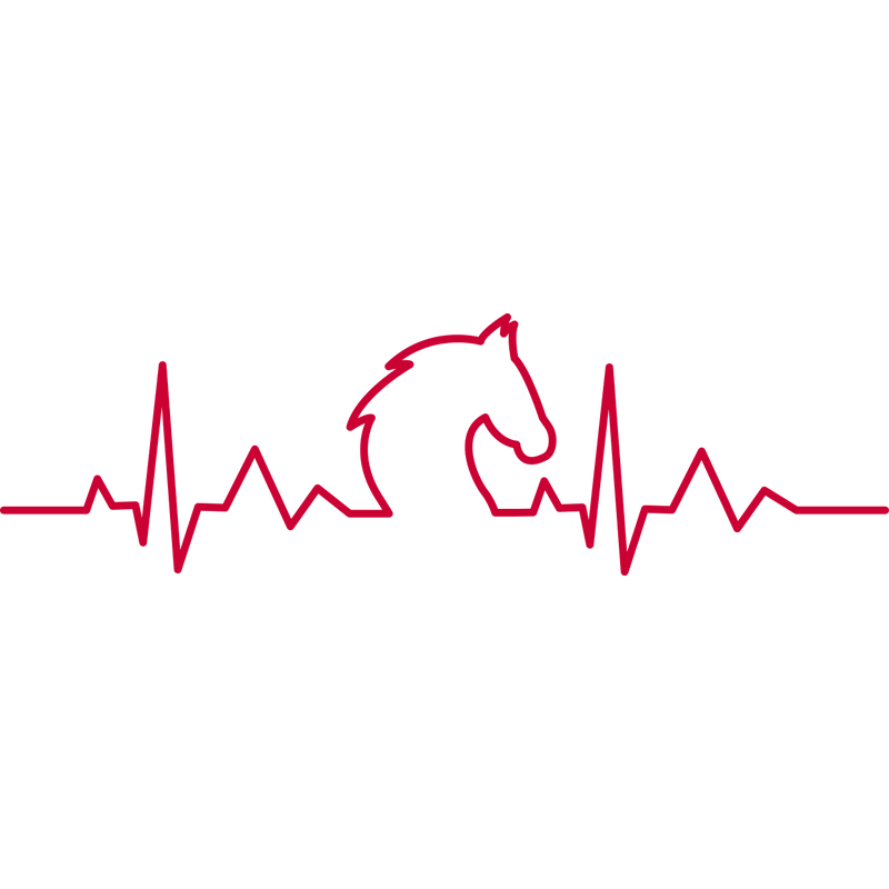 Pferde Herzschlag Heartbeat