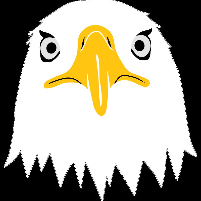 Adler Weißkopf Seeadler