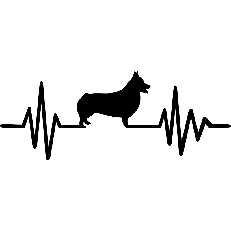 Welsh Corgi Pembroke