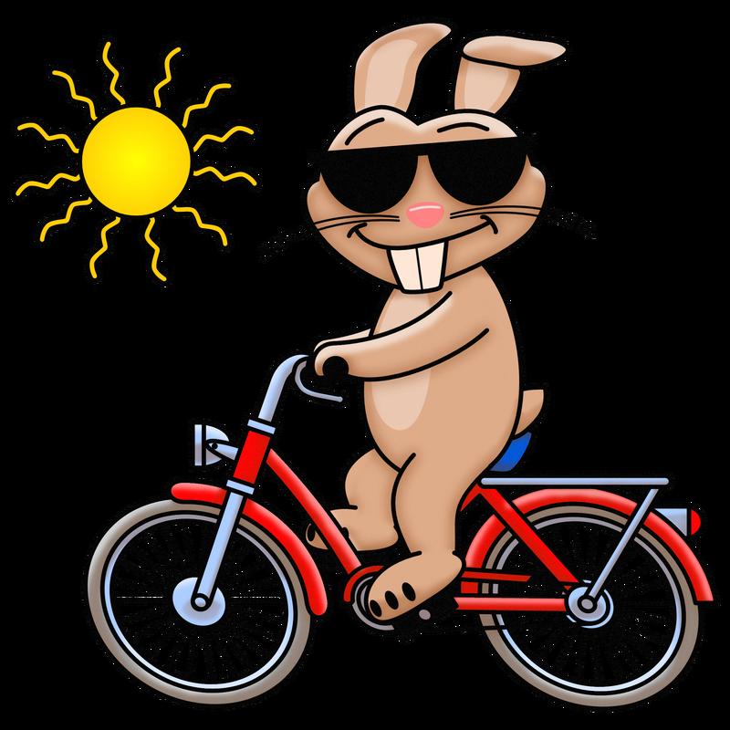 Cooler Hase fährt Fahrrad