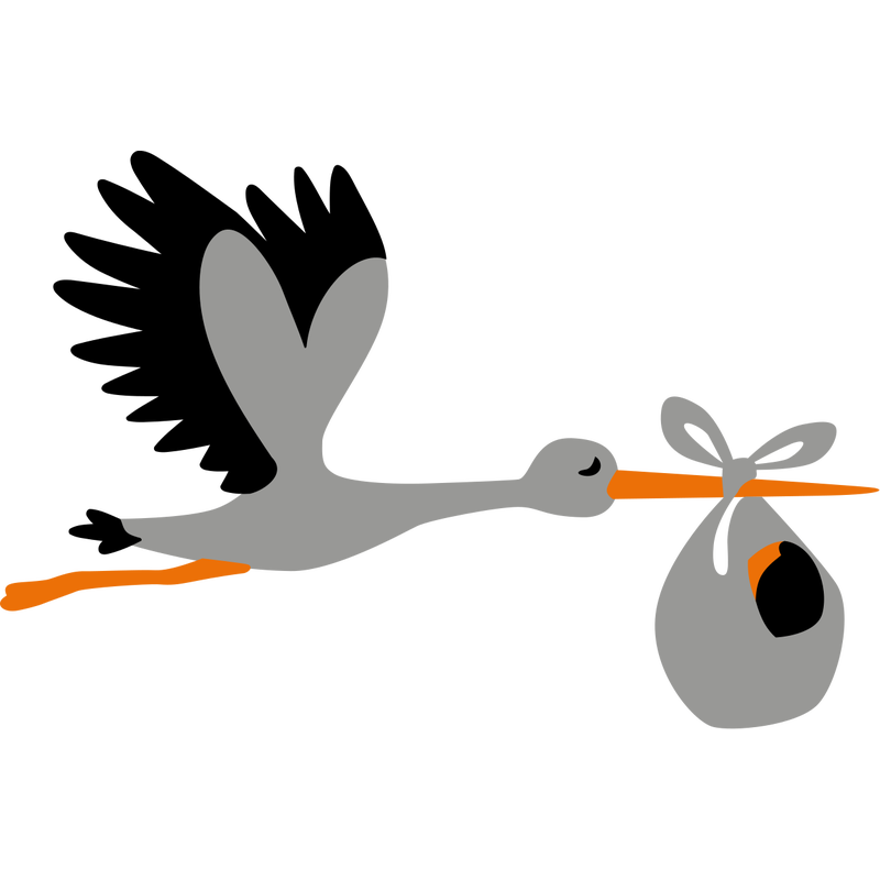 Storch Baby Schwangerschaft