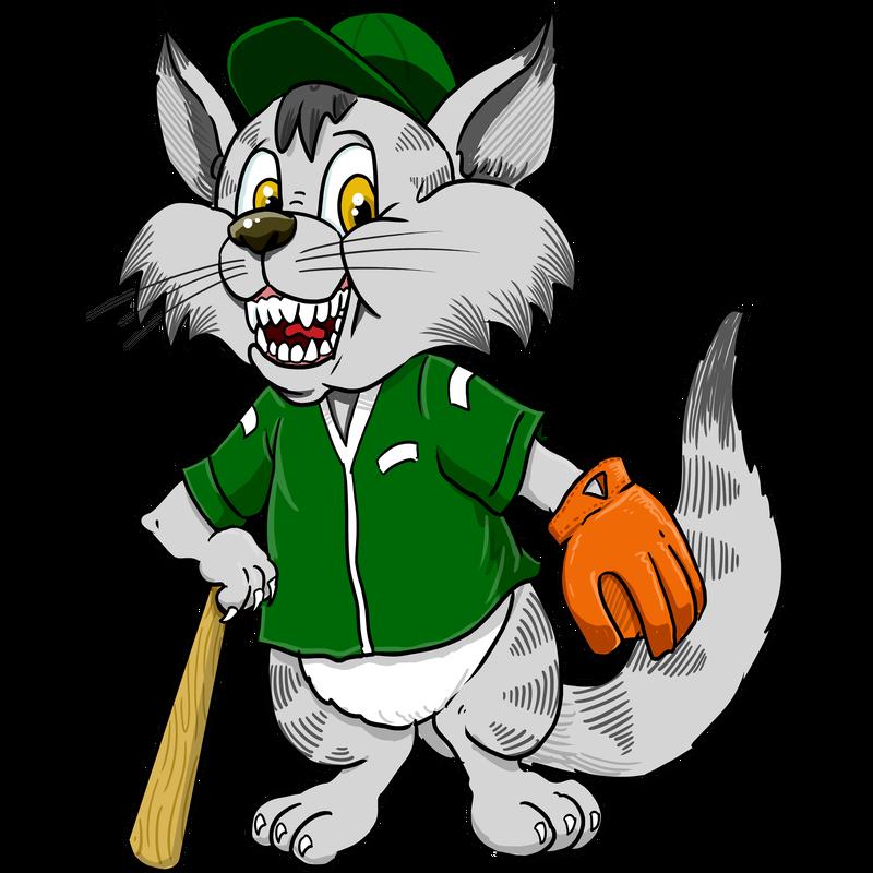 Baseball Katze