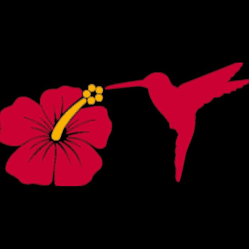 Hibiskus und Kolibri