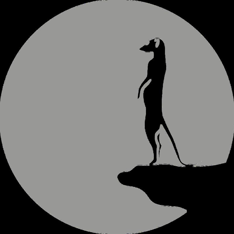 Erdmännchen vor Mond
