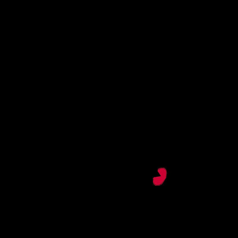 Dartscheibe -  Darts