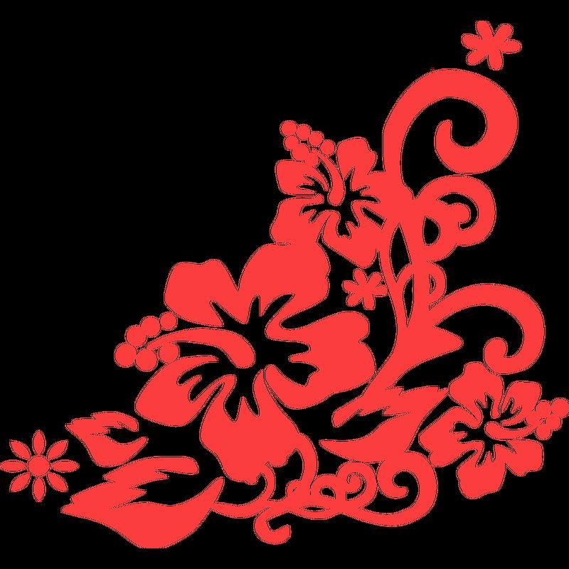 Hibiskus Blüte